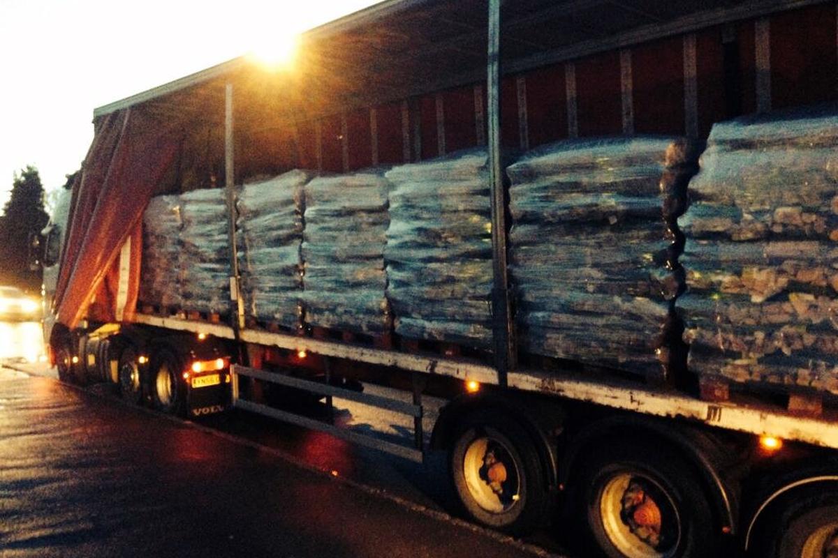 log truck rs